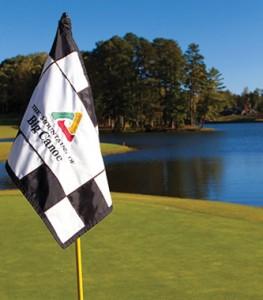 flag golf