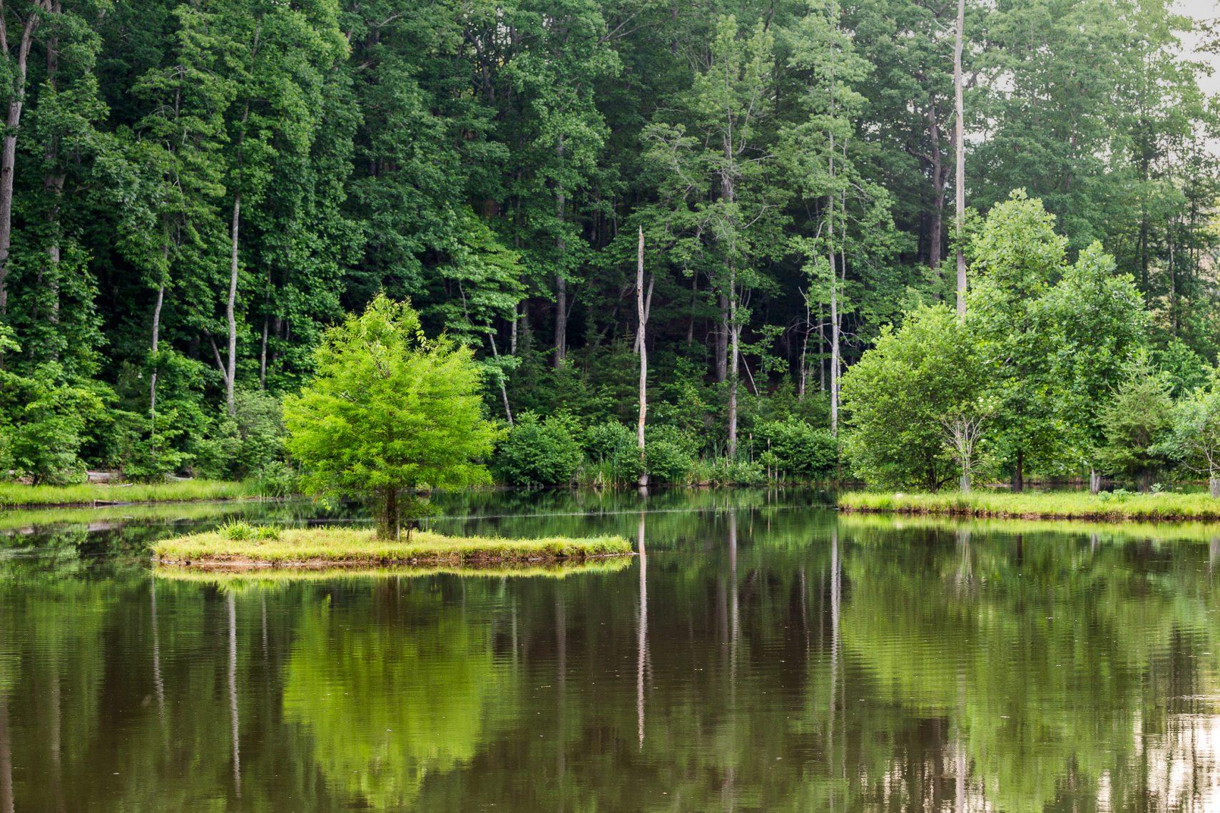 Waterford trails hero 3 big canoe for Big canoe